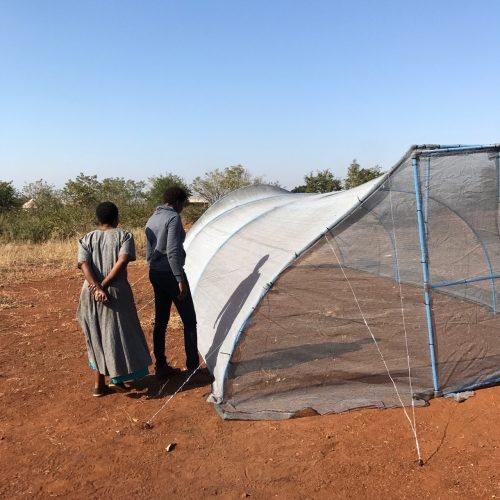 Foodtunnel brengt Pfukani dichterbij een zelfstandig bestaan