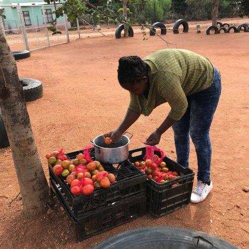 Iedere Bambanani-school een tuinman…